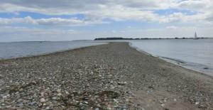 Svelmø Maj 2014 033